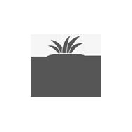 paulketz-logo