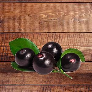 acaibeere-fruchtpulver