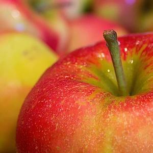 apfel-fruchtpulver