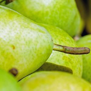 birne-fruchtpulver