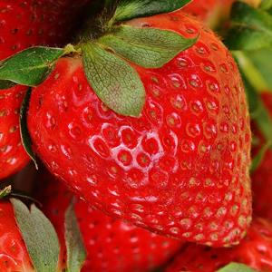 erdbeer-fruchtpulver