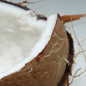 kokos-fruchtpulver