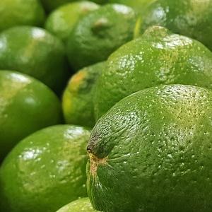 limette-fruchtpulver