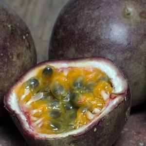 maracuja-passionsfrucht-fruchtpulver